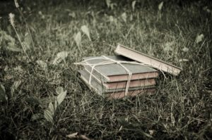 Books In Grass
