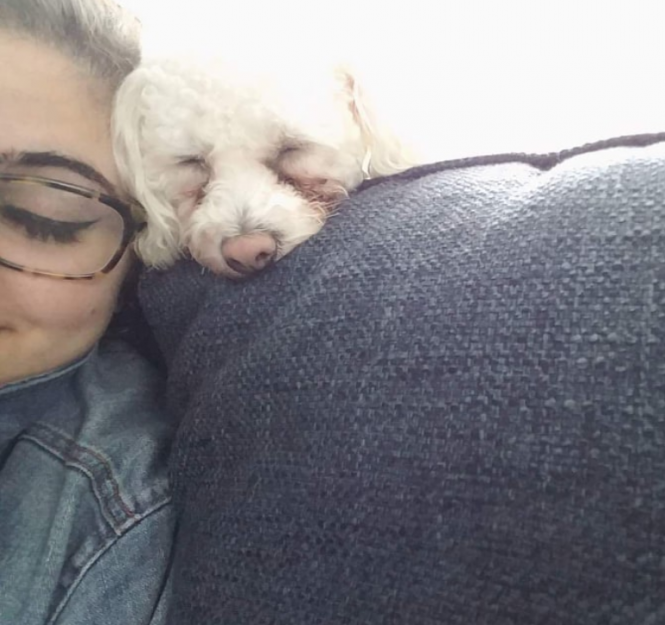 A selfie of the author, wearing glasses, and their cousin's white dog with a pinkish nose on a sofa together snuggling.