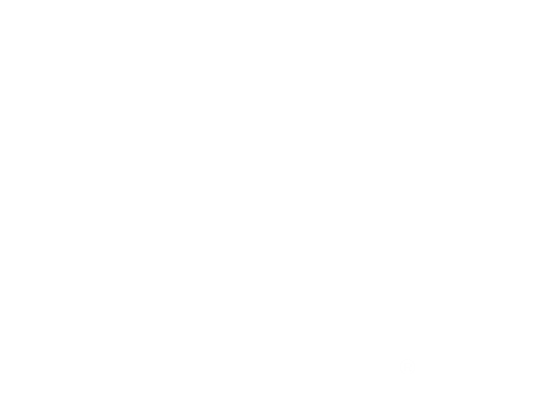 VIDA White Starburst